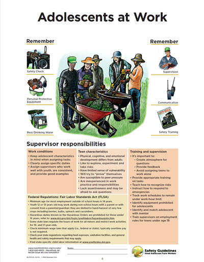 Click here to open Adolescents at Work PDF in English.