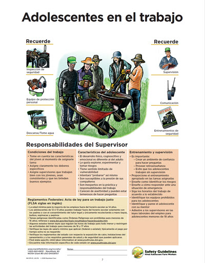 Click here to open Adolescents at Work PDF in Spanish.