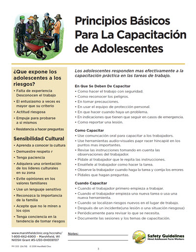 Click here to open Basic Principles for Training Teens PDF in Spanish.