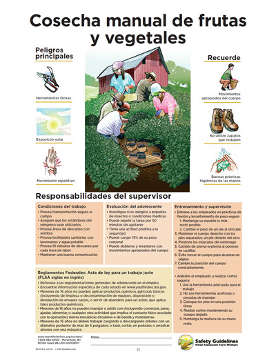 Click here to open Hand Harvesting Fruit and Vegetables PDF in Spanish.