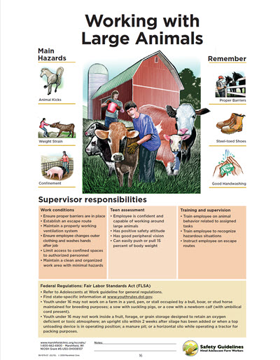 Click here to open Working with Large Animals PDF in English.
